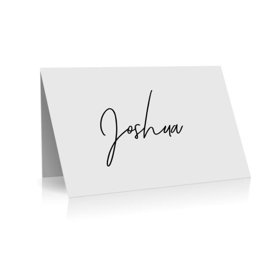 144 Pen Script Place Card Modern Font WEB